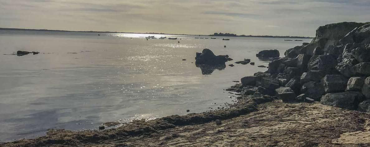 Camping parc accès Morbihan