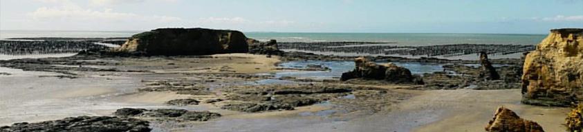 La plage de la Mine d'0r à Pénestin